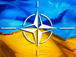 Ukraina utverdila pervye soglashenija o standartizacii s NATO