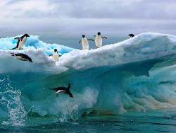 Россия в апреле высадит войска в Арктике.